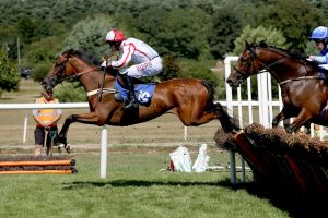 FIELDS OF FORTUNE IMPRESSES TO RECORD FIRST WIN