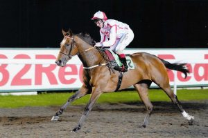 JUST IN TIME ENDS A GREAT SEASON WITH A GOOD ATTEMPT AT KEMPTON