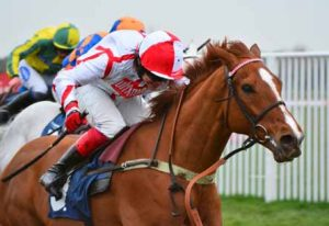 FIRST MOHICAN TO MAKE COMEBACK OVER HURDLES